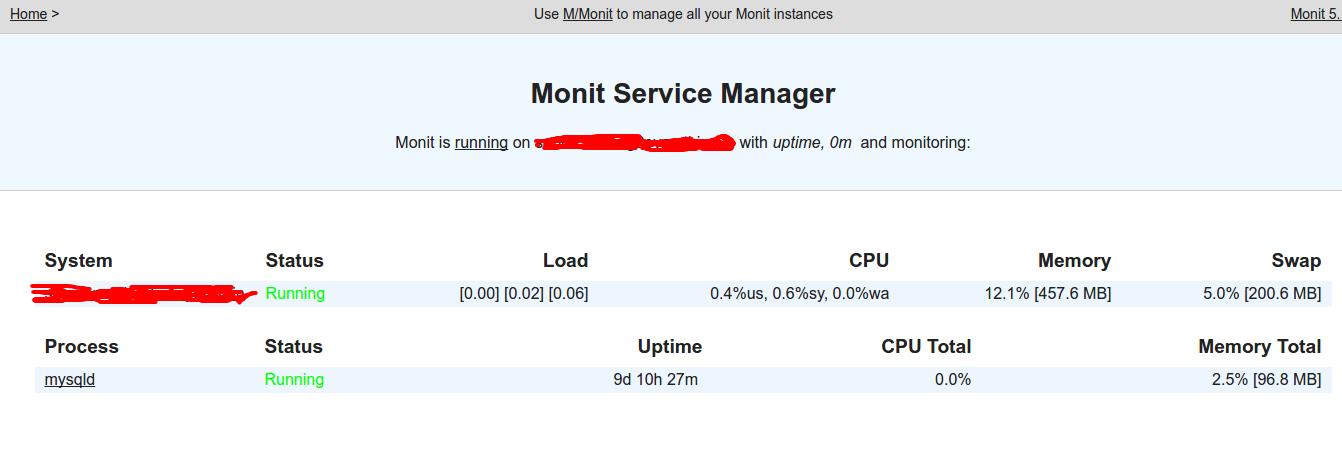 monit-server